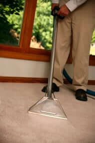 best carpet cleaning service in plantation